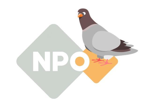 Hoe leert een NPO organisatie proactief denken..