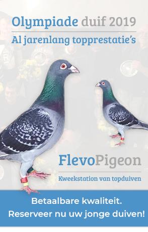 Advertentie: Flevopigeon | Kweekstation van topduiven!